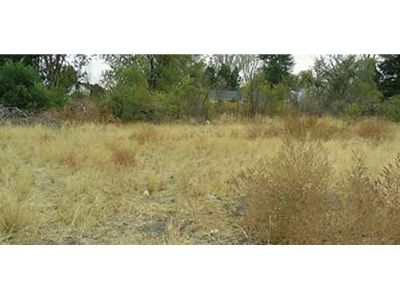 RESIDENTIAL/ COMMERICAL 100X150' ADJACENT, LEVEL, LAKEVIEW LOTS ...