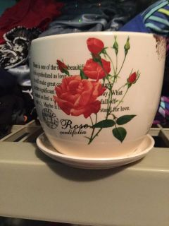 New flower planter Rose comes with saucer attached for excess water large coffee cup size