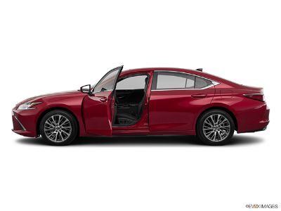 2019 Lexus ES 350 (ULTRA WHITE)