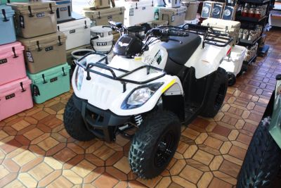 2018 Textron Off Road Alterra 150 Kids ATVs Campbellsville, KY