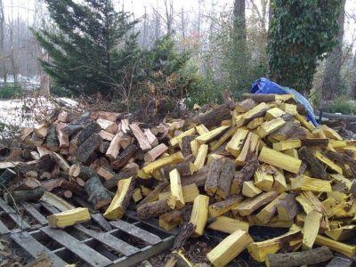 Seasoned, hard firewood