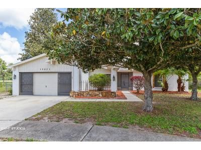 3 Bed 2 Bath Foreclosure Property in Hudson, FL 34669 - Pecan Tree Dr
