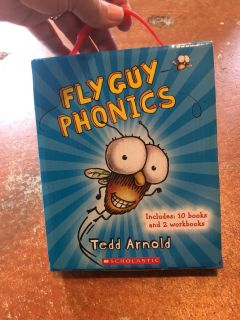 Brand new Fly Guy books and workbooks