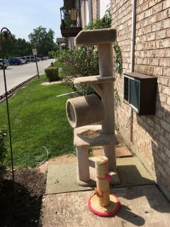 Cat Tree located in Alsip