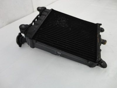 Purchase 1980-1983 Honda GoldWing GL1100 Interstate Radiator Assembly NICE 3159 motorcycle in Kittanning, Pennsylvania, US, for US $39.99