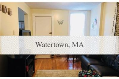 Watertown three bedroom apartment with modern kitchen and bathroom.