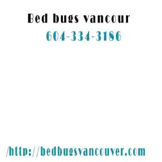 Bed Bugs Vancouver