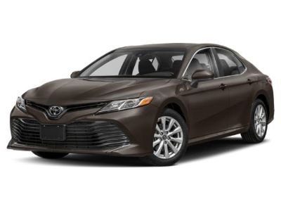2019 Toyota Camry LE (White)