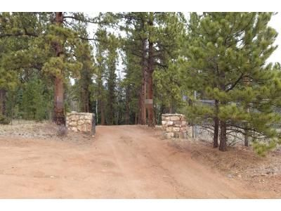 2 Bed 1 Bath Preforeclosure Property in Pine, CO 80470 - S Parker Ave
