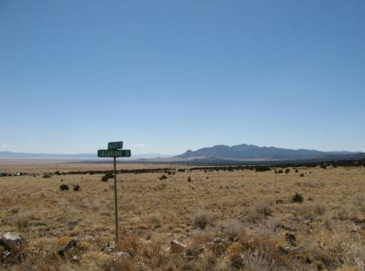 My NM land for your TX