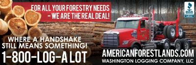 TIMBER $ WE PAY YOU Logging Trees Land Puyallup, Olympia, Thurston County, Chehalis, Rainier, WA