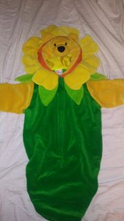 Disney's Winnie the Pooh in a sunflower suit. Made very well dot-dot