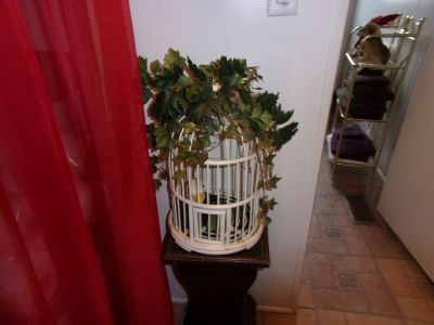Small Old Bird Cage