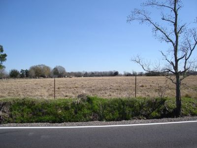 $121300 24 Acres of Land for Sale (Church Point)