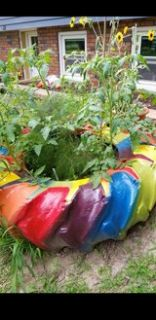 Rainbow painted tractor tire planter