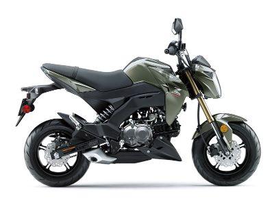 2018 Kawasaki Z125 Pro Sport Motorcycles New Haven, CT