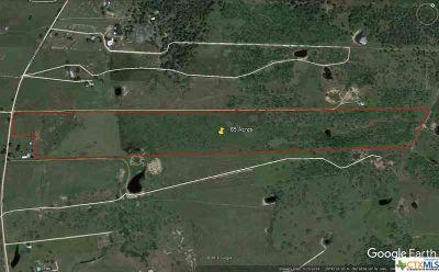 000 Fm 1890 Columbus, , Texas - Shaws Bend Road (FM 1890 and