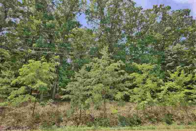 0 Pin Oak DR Blue Ridge, Wooded lot in established