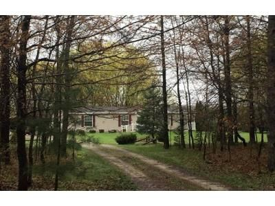 3 Bed 2 Bath Foreclosure Property in Chesaning, MI 48616 - Ward Rd