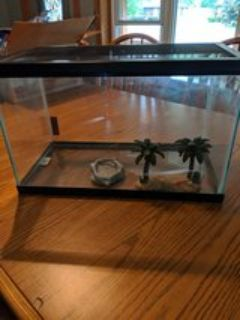 10 gallon tank with screened lid