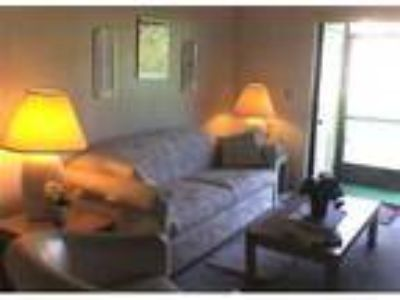 Boca Raton Beautiful Two BR, Two BA Condo Now thorugh January 10th - Condo
