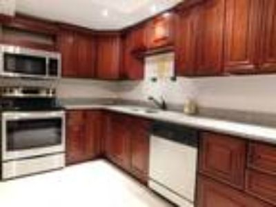 Beautiful Luxury Apartments With Specials You Can't Pass Up! INCLUDES PARKING