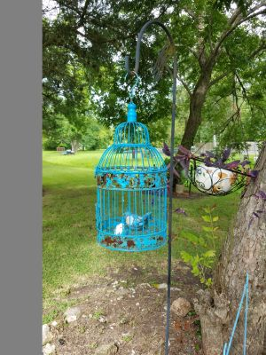 Metal Bird Cage with bird . Needs to be paint