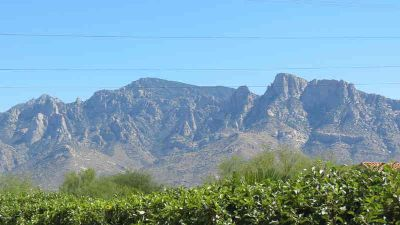 140 E Atelier Way Oro Valley, Awesome Three BR Two BA home
