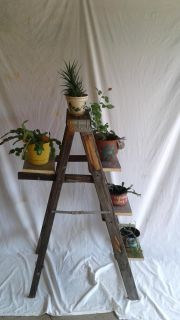 4 ft ladder plant stand