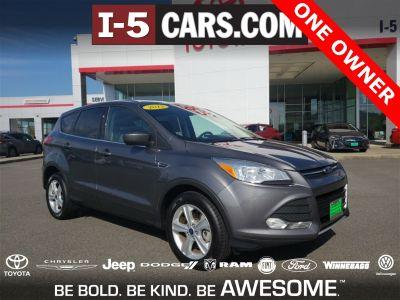 2013 Ford Escape SE (Gray)