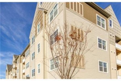 2 bedrooms Apartment in Westford. Pet OK!