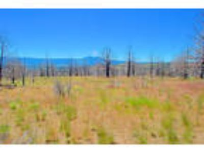Oregon Land For Sale, 2.3 Acres open meadows secluded