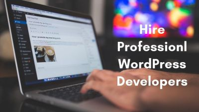 Hire Professional WordPress Developers