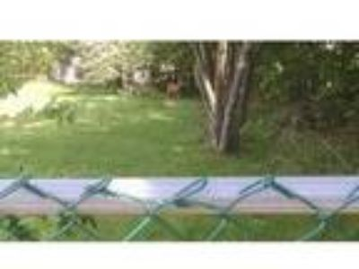 Lot For Sale - Deer not Included!