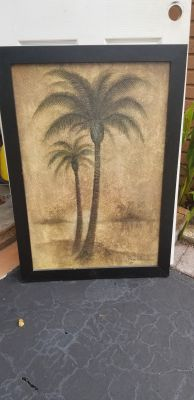 Picture Palm Trees 40 28