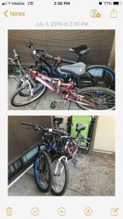 2 Adult Trail Bikes