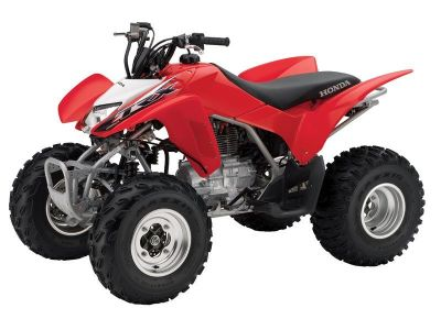 2014 Honda TRX 250X Sport ATVs Johnson City, TN