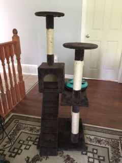 Cat tree and toy