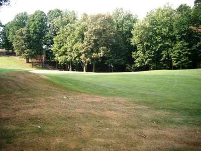 Lot 24 Larboard Dr Moneta, This 1 acre oversize wooded lot