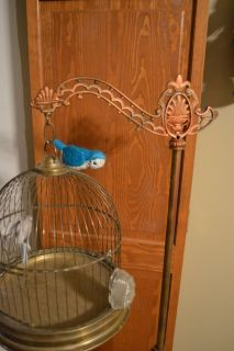 Antique Wrought Iron & Brass Bird Canary Cage With Stand Ornate