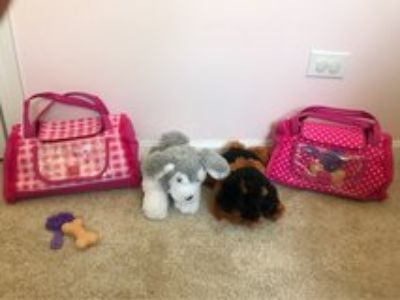 Toy dogs with pet carrier, brush and bone