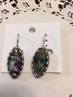 NEW! Oval multi-colored earrings. Swap only