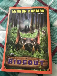 "Kids chapter book titled ""Hideout"""
