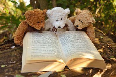 French Fall Book Club in Alexandria VA for advanced children