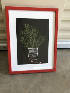 IKEA red frame with rosemary image