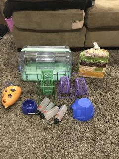 Cage hamster, mouse, small rodent
