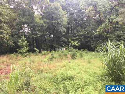 0 Antioch Rd Scottsville, 3 acre wooded lot with existing