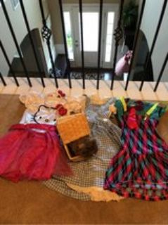 Girls Halloween Costume Lot