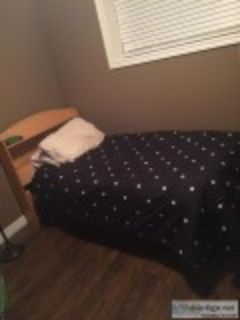 Single Bed Amazing Condition