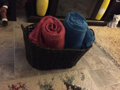 Large basket, very sturdy $4....22 inches wide, 13 inches tall